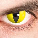 Gelbes Katzenauge Kontaktlinse